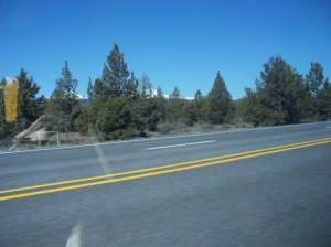 The worlds largest juniper forest is spread over the middle of Oregon